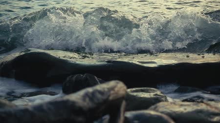 On a large flat stone lying in the water on the shore rolls wave with foam slow motion Stok Video