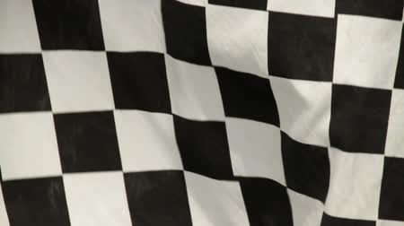 dizilirler : waving checkered racing flag
