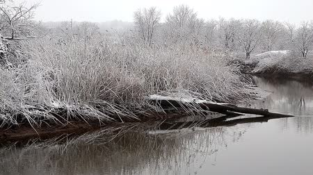 kar taneleri : Heavy snow on the river. Winter weather