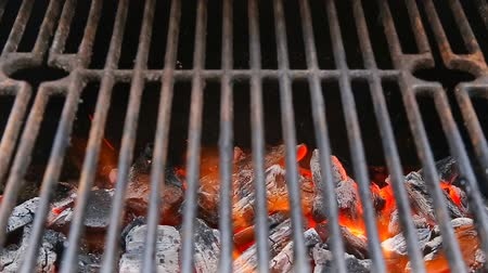 piknik : BBQ Grill and glowing coals. You can see more BBQ, grilled food, fire
