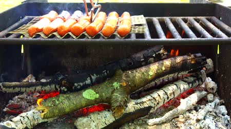 grubas : Bratwurst sausages cooking on a wood barbecue. Wideo