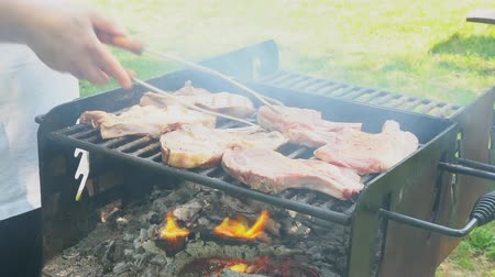 barbequing : Juicy Stakes Cooking On Grill Barbeque Outdoors Countryside Meat Smoke