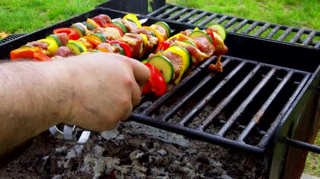 kebab : Barbecue. Shish kebab with grilled peppers on hot grill