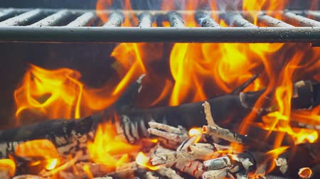 kamp ateşi : Barbecue on the Summer nature beach wood fire barbecue