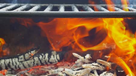 égés : Barbecue on the Summer nature beach wood fire barbecue