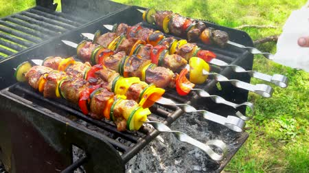 kebab : Bar-BQ or BBQ with kebab cooking. coal grill of chicken meat skewers with mushroom and peppers. barbecuing dinner