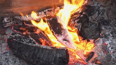 ember : SLOW MOTION: Close up details of a campfire fire flames burning in nature.