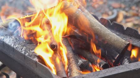 kebab : fire wood for barbecue charcoal Slow Motion Closeup of a warm fire burning in a campfire Stock Footage