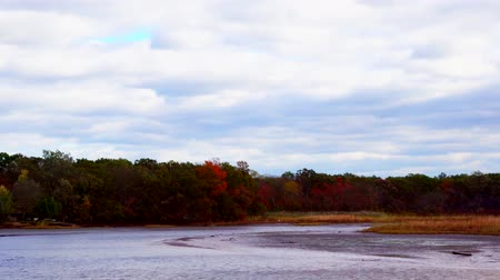 perili : Clouds Moving Over River and Fall Trees