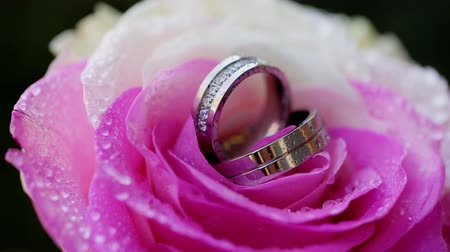 jewellery : wedding rings rose taken closeup with water drops Wideo