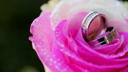 jewellery : Gold wedding rings and pink roses