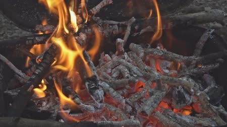ontvlambaar : Mooie close-up kampvuur video beukenhout brandende open haard vol hout en vuur Slow-Motion hd-video