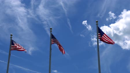 Flags of the United States waving over blue sky