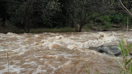 margem do rio : A wide angle view showing a fast moving and swollen river after a flash flood