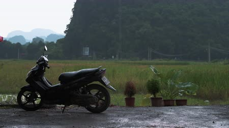 ninh : Tam Coc, Vietnam - 20th October 2019: A moped stands against a rice field in Tam Coc, Ninh Binh, Northern Vietnam