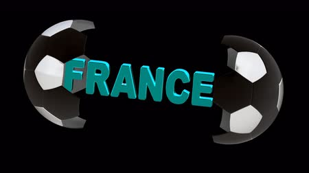 french team : France. Looping footage with Encoder Prores 4444 has 4K Resolution and the alpha channel included.