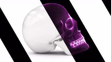скелетный : The mesh of the skull. Looping footage has 4K resolution. Encoder Prores 4444.