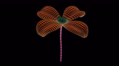 construct : Flower. Looping footage has 4K resolution. Prores 4444. 3D Illustration. Stock Footage