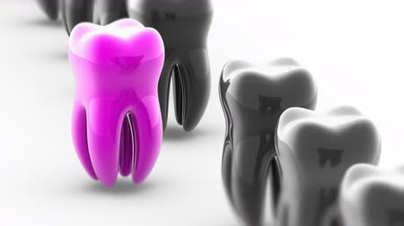 black and white : The tooth. Looping footage has 4K resolution. Prores 4444. 3D Illustration.