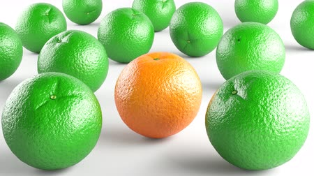 grejpfrut : Oranges. Footage has 4K resolution. Prores 4444. 3D Illustration. Wideo