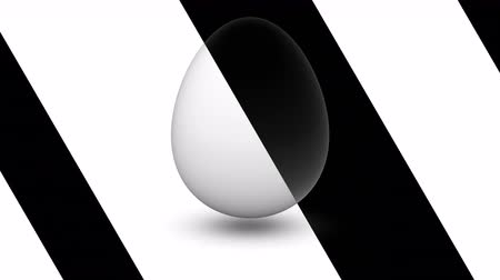casca de ovo : Egg. Looping footage has 4K resolution. Prores 4444.