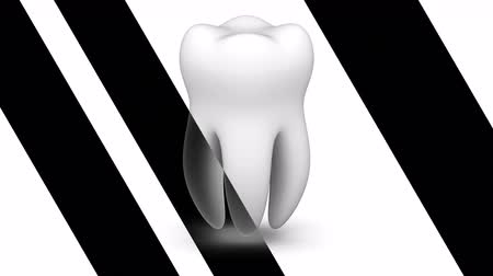 molar : Tooth. Looping footage has 4K resolution. Prores 4444.