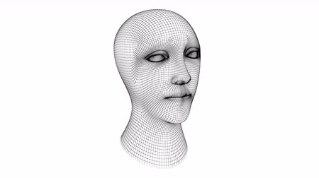 mesh : The head. Looping footage has 4K resolution. Prores 4444.