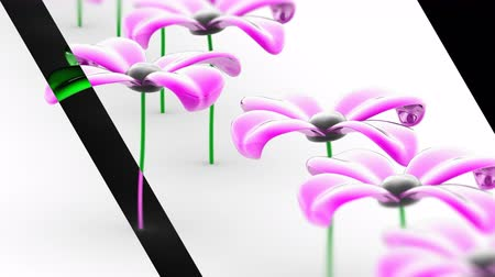 florido : The flower. Looping footage has 4K resolution. Prores 4444. 3D Illustration.