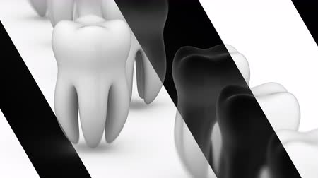 dent : The tooth. Looping footage has 4K resolution. Prores 4444. 3D Illustration.