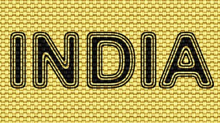 nomeação : India. Looping footage. Illustration. Stock Footage