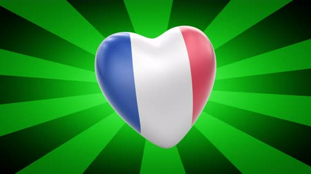união europeia : France. Looping footage has 4K resolution. 3D Illustration. Stock Footage