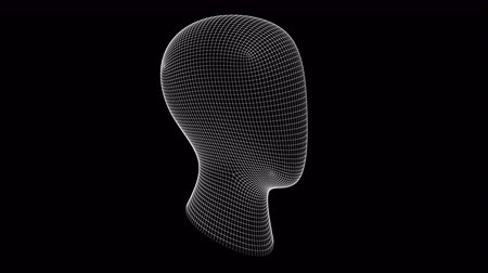 psyche : The grid of a head. 3D Illustration.