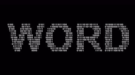 Word. Binary code in the screen. Looping footage. Illustration. Stok Video
