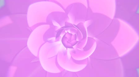 gentleness : The elegant and clean looping 3D animation of pink flower background Stock Footage