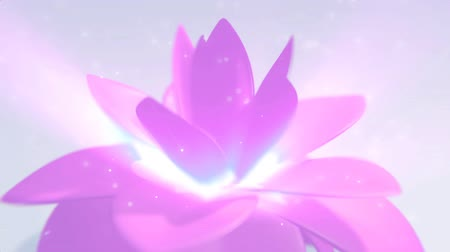 abridor : The elegant and clean looping 3D animation of pink flower background Stock Footage