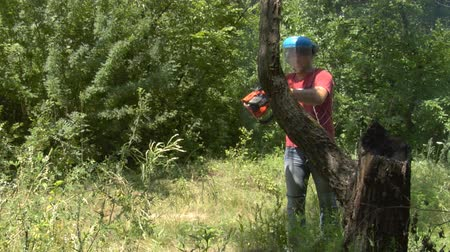 цепь : man cutting wood with chainsaw