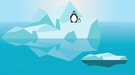 imperador : Penguin family with worried nervous face jumping on melting iceberg - Global warming crisis Climate change problem concept animation footage clip Stock Footage