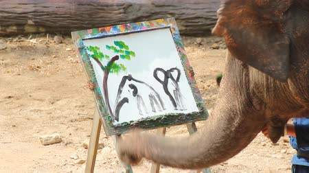 white elephant : LAMPANG, THAILAND - April 13, 2017 :-  Elephant painting in picture tree frame  at The Thai Elephant Conservation Center (TECC), Mahouts show how to train elephant in forestry industry Stock Footage