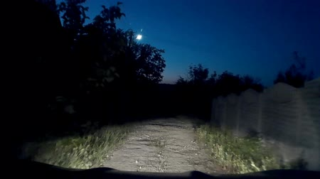 low lighting : This is mysterious mystical strange dark night dangerous country road video. Stock Footage