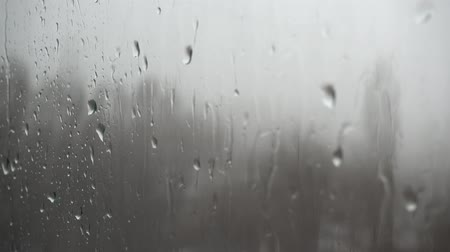 Drops Of Rain 4k on the window Background