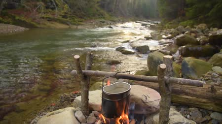 konvice : Cooking food in pot over campfire