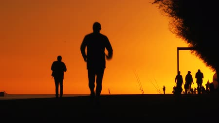 atlet : Jogging at Sunset