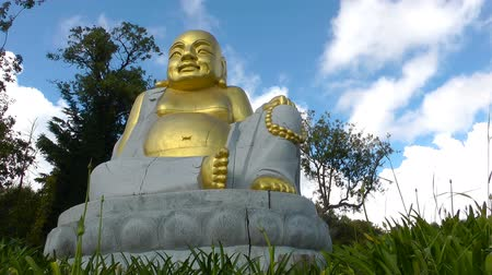 fatvel : Buddha Meditation and Comtemplation Stock Footage