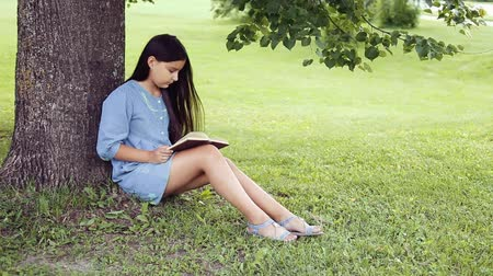 pictured : A Beautiful little girl with long hair reads a book sitting under a tree on a sunny day Stock Footage