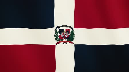 ensign : Dominican Republic flag waving animation. Full Screen. Symbol of the country. Stock Footage