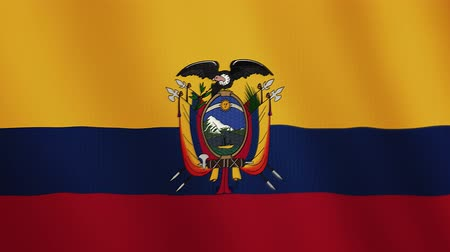 equador : Ecuador flag waving animation. Full Screen. Symbol of the country.