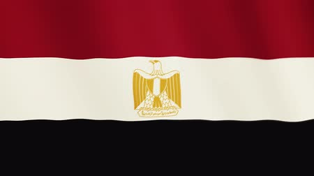 democrat : Egypt flag waving animation. Full Screen. Symbol of the country. Stock Footage