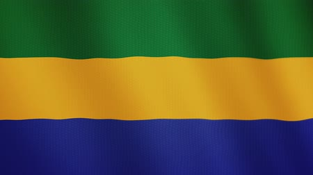 doména : Gabon flag waving animation. Full Screen. Symbol of the country.