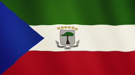 клык : Equatorial Guinea flag waving animation. Full Screen. Symbol of the country.