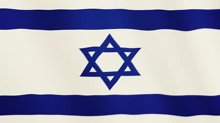 jewish : Israel flag waving animation. Full Screen. Symbol of the country.